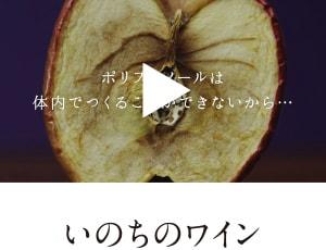 タマチャンショップのYoutube動画(いのちのワイン)