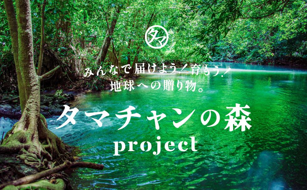 タマチャンの森project