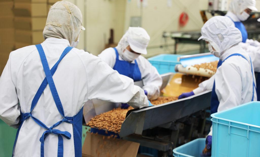 【工場見学レポート】 1粒1粒に愛を込めて。 タマチャンショップのナッツが美味しい理由。
