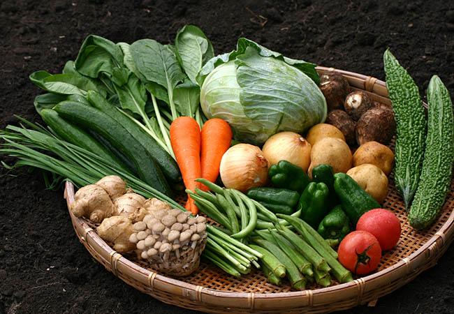 かごに盛られた色とりどりの野菜